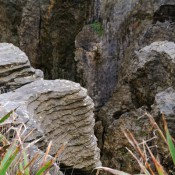 去 Punakaiki 赴一場交響樂 – Pancake Rocks at Punakaiki